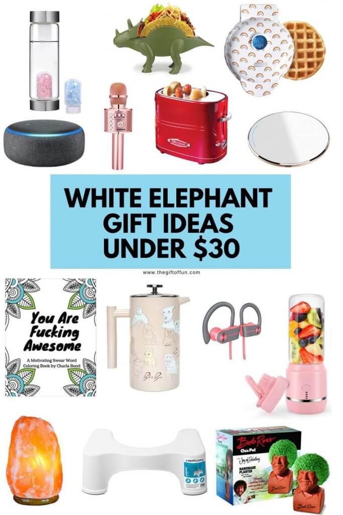 White Elephant Gift Ideas Under $30