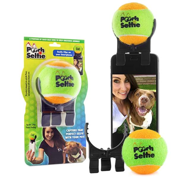 pooch dog selfie stick