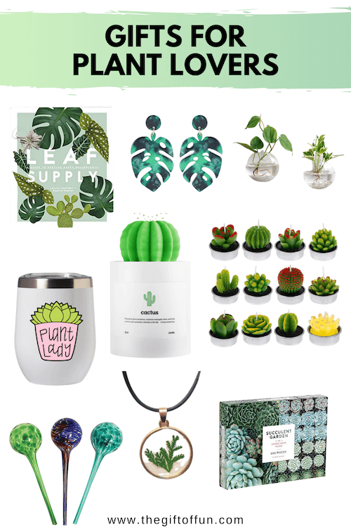 The Ultimate Plant Lovers Gift Guide